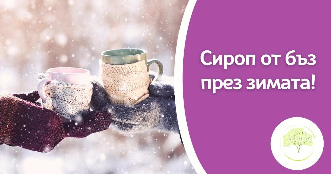 Сироп от бъз през зимата