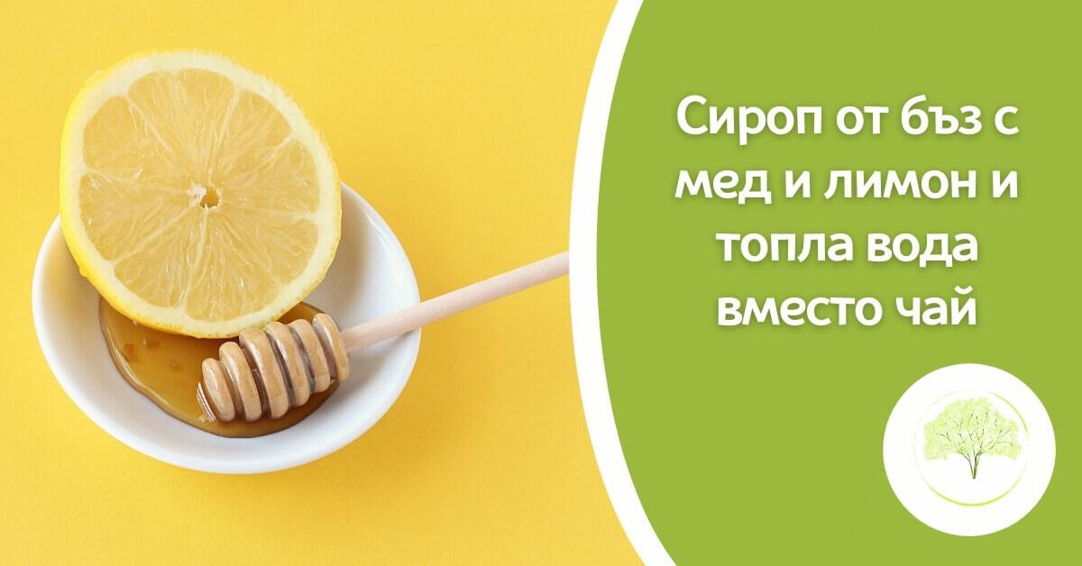 Сироп от бъз с мед и лимон